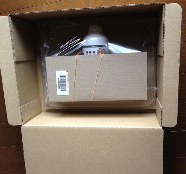 amazonの箱とおなつゆ